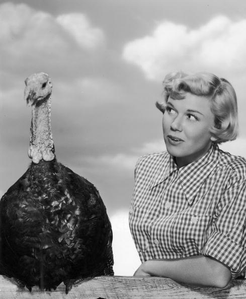 Doris Day eptiomizes gingham