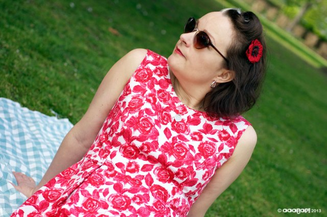 Elisalex dress in rose print