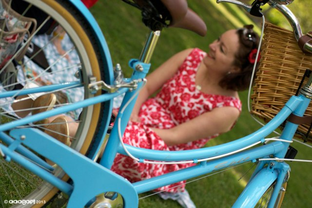 Elisalex the perfect picnic dress